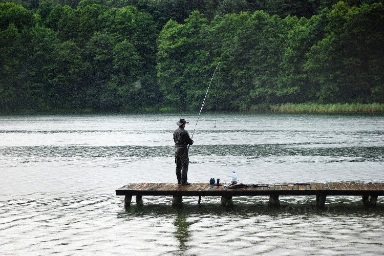 Best time for fishing - rain