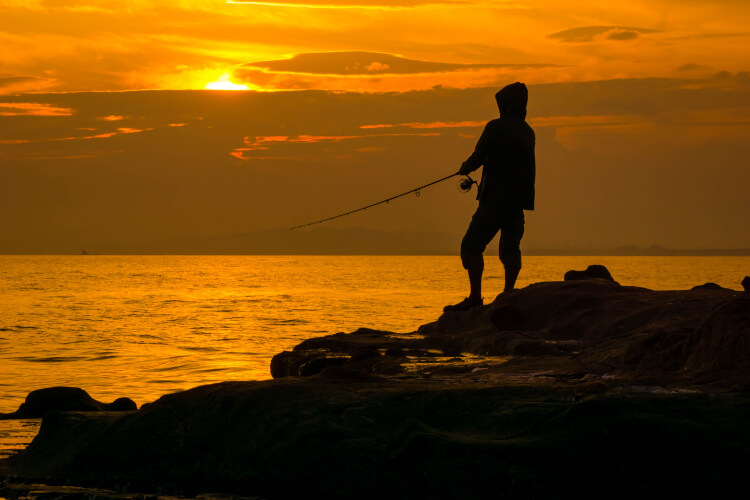 What is the Best Time to go Saltwater Fishing - By Night
