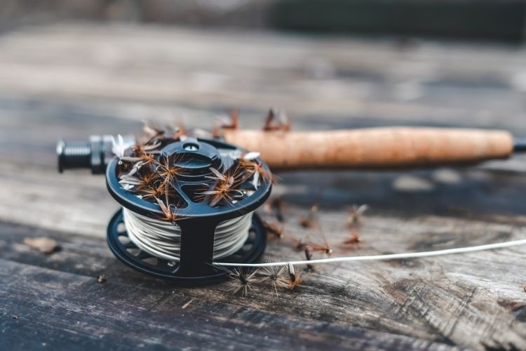 Different Types of Fishing Reels - Fly Reels