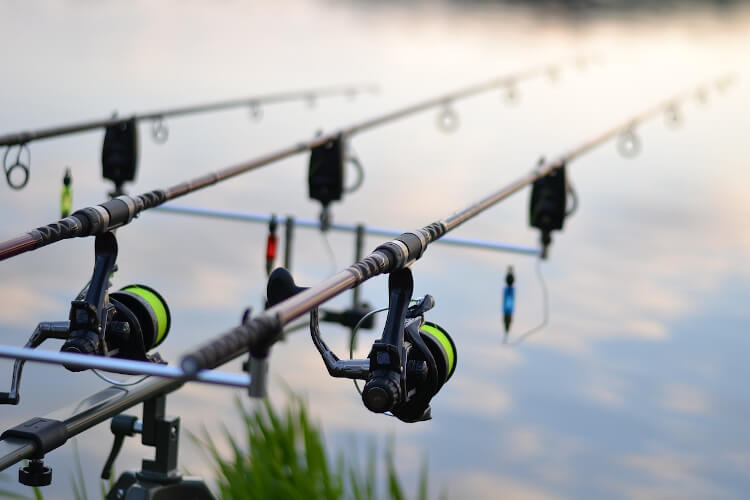 What Does the Gear Ratio on a Fishing Reel Mean - for Carp Fishing