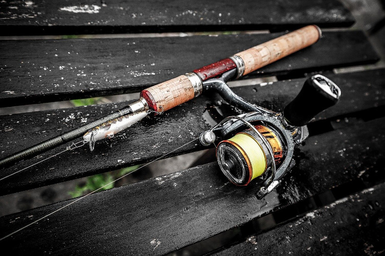 10 Best Fishing Rod and Reel Combos for Beginners