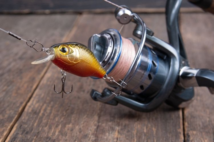 Best Reels for Fishing with Crankbaits
