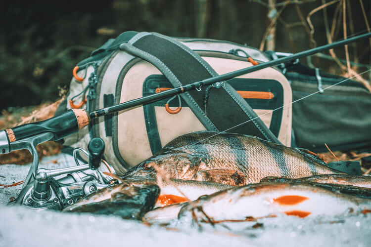 Essentials for Ice Fishing: What Every Angler Needs?