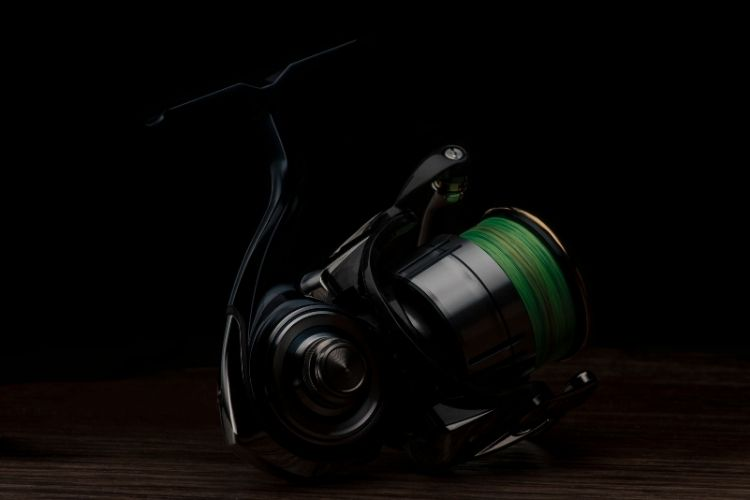 PISCIFUN Carbon X Spinning Reel Review
