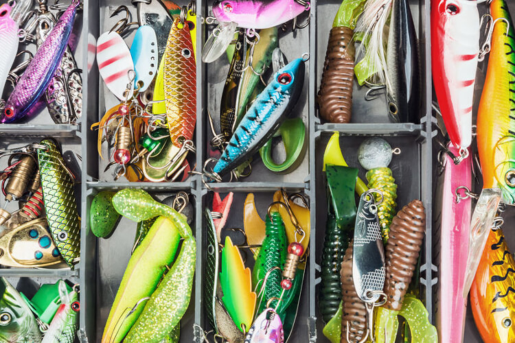 Best baits (lures) for bass fishing
