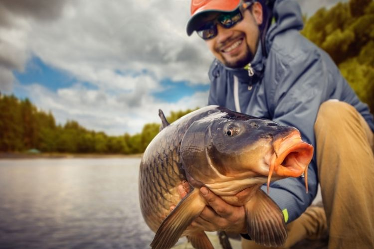 Carp Fishing With Worms Tips