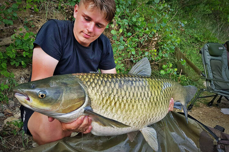 How to Catch Grass Carp? A Quick Guide!