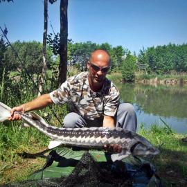 Jale CARP, with big sturgeon