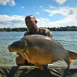 Jale CARP, with leather carp