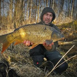 Jale CARP, cold fishing