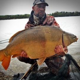 Jale CARP, with leather carp in winter