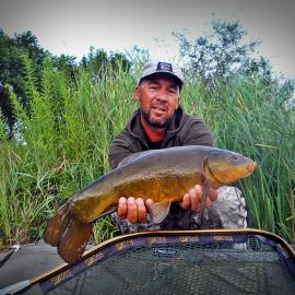 Jale CARP, tench from river