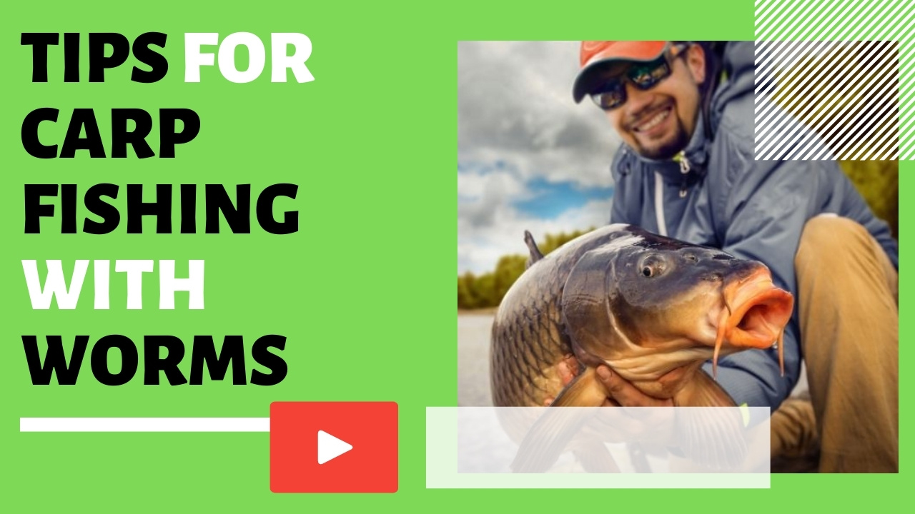 BEST Tips for Carp Fishing With Worms - Video