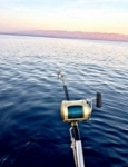 Fishing_58386 avatar